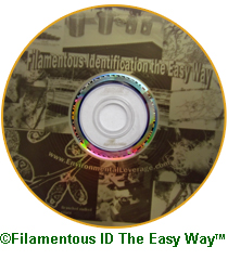 Filamentous Identification CD